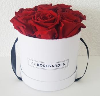 Rosenbox (2)