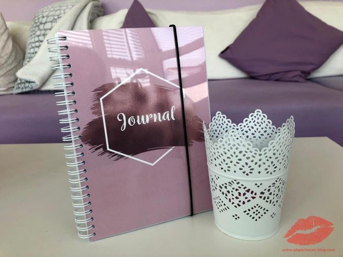 Journal6
